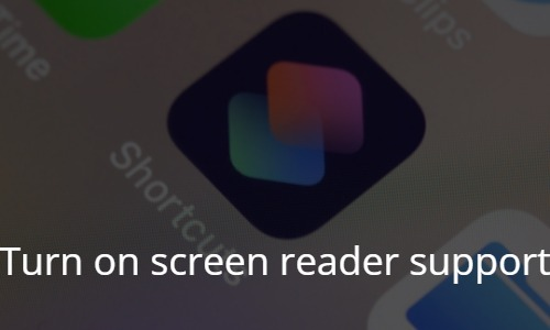 Turn on screen reader support